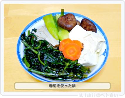ペトさい(春菊)50