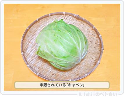 ペトさい(キャベツの芯)01