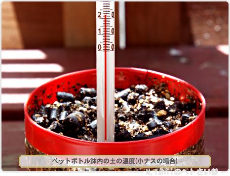 鉢の土の温度01