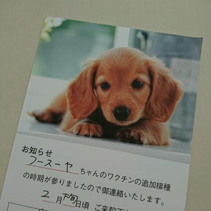 17-02-25-08-27-12-633_photo.jpg