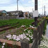 17-0506世田谷線
