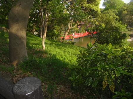 1 茶臼山頂上付近から池を見下ろす
