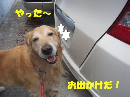 IMG_3703.jpg