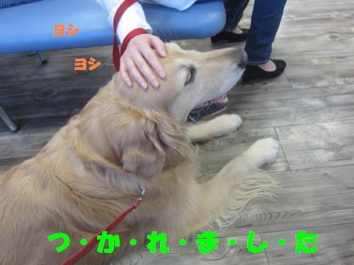 IMG_3713.jpg