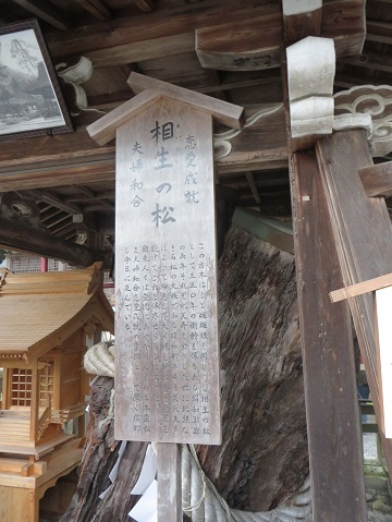 2017・130松尾神社 019-1l