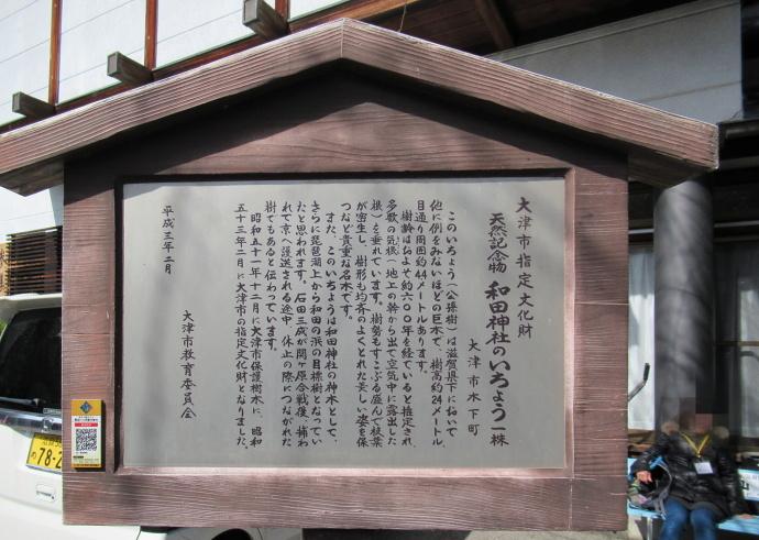 170228銀杏 (4)