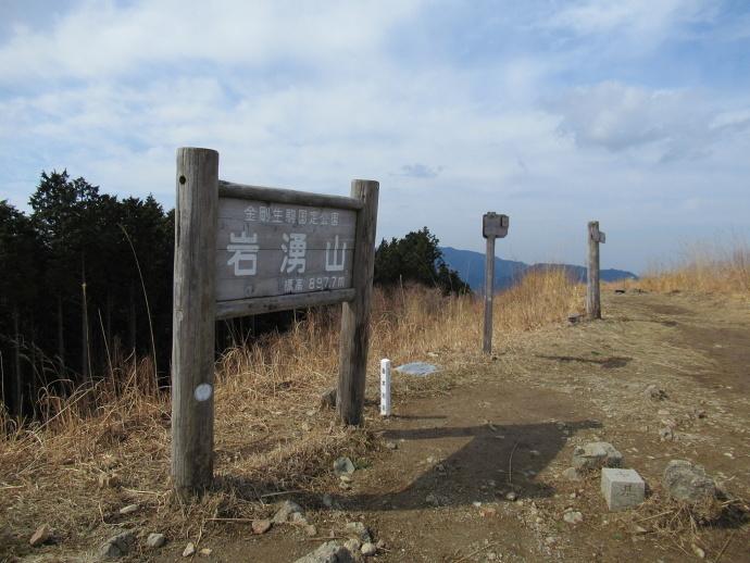 170304岩ワキ (3)