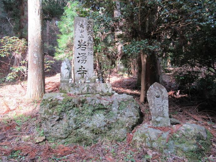 170304岩湧山道 (6)