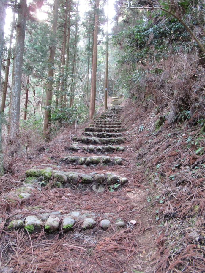 170304岩ワキ (1)