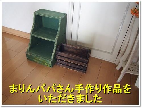 20170426_100.jpg