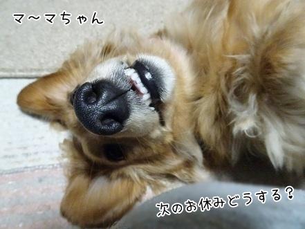 kinako6773.jpg