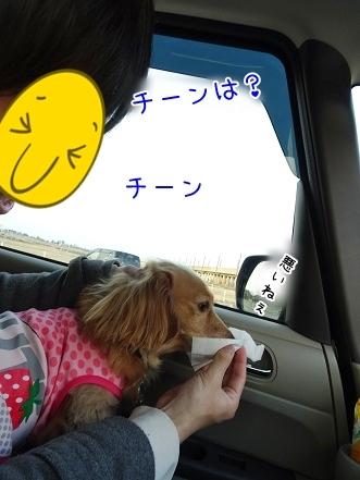 kinako7061.jpg