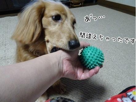 kinako7125.jpg