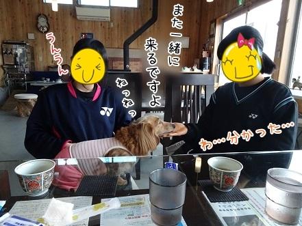 kinako7271.jpg