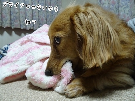 kinako7301.jpg