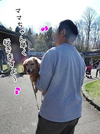 kinako7369.jpg