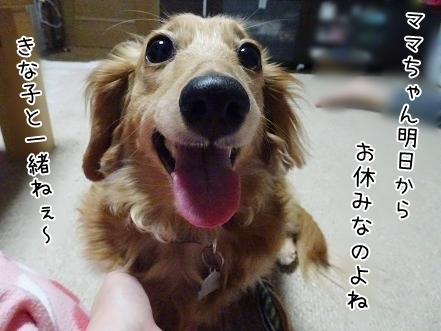 kinako7389.jpg