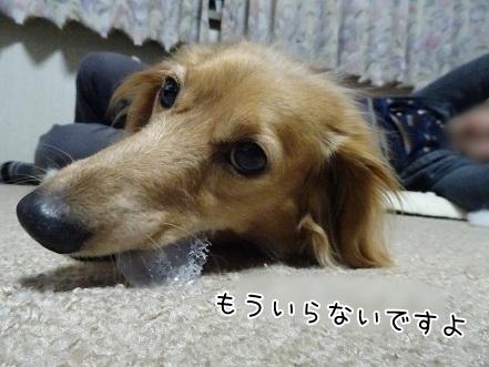 kinako7424.jpg