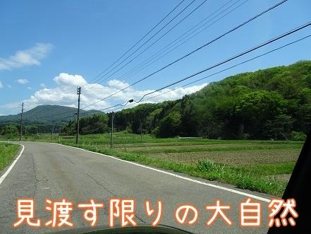 kinako7444.jpg