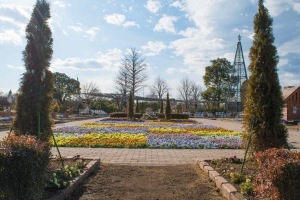 あしかがフラワーパークの花たち4