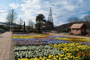 あしかがフラワーパークの花たち5