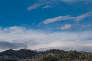 あしかがフラワーパーク空と山