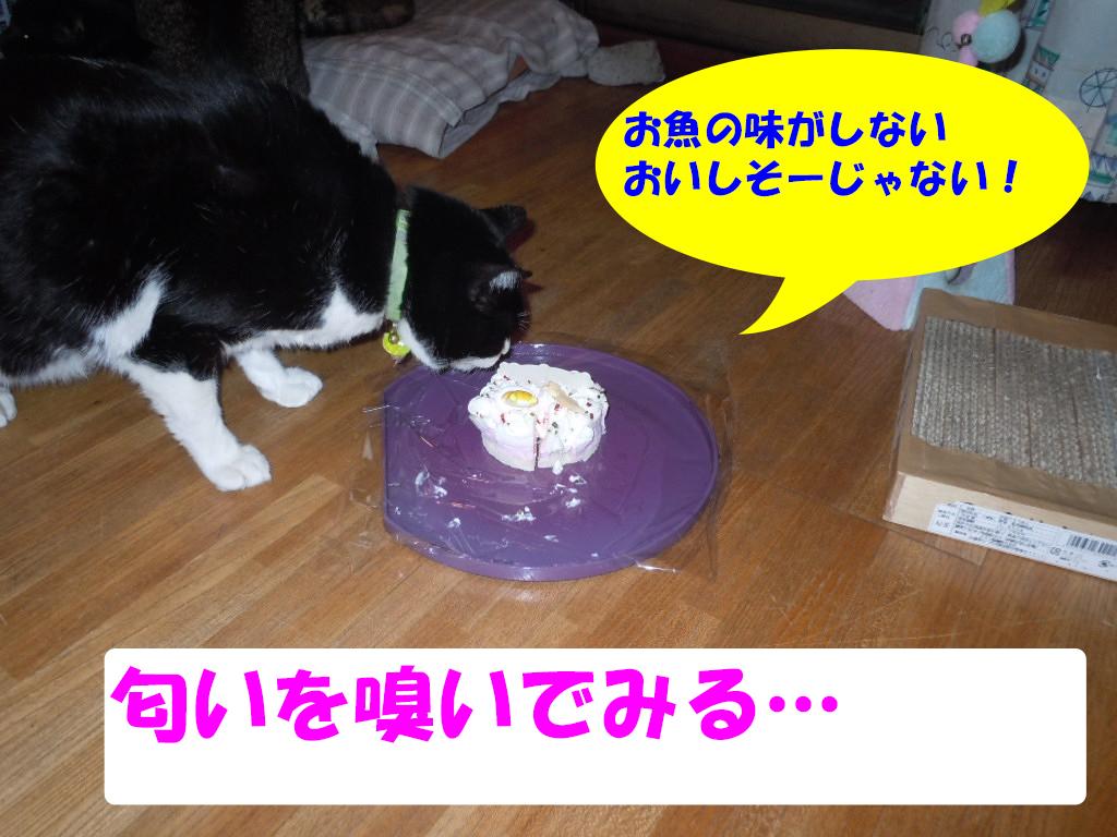 8歳誕生日5
