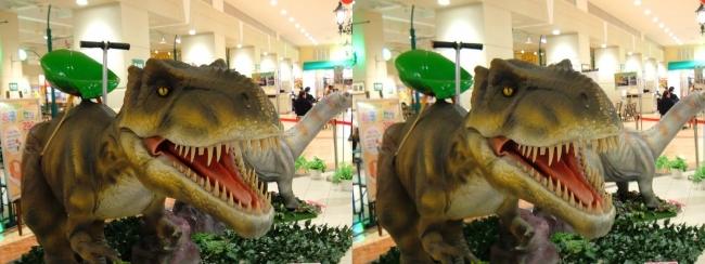 イオン東大阪店 恐竜ロボット ティラノサウルス②(平行法)