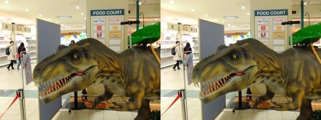 イオン東大阪店 恐竜ロボット ティラノサウルス①(平行法)