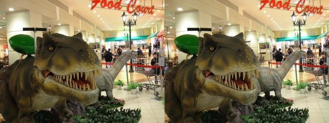 イオン東大阪店 恐竜ロボット ティラノサウルス・アパトサウルス①(平行法)