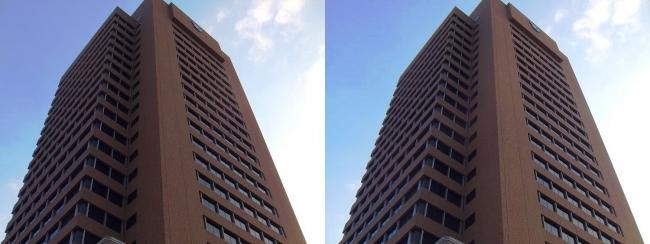 東大阪市役所(平行法)