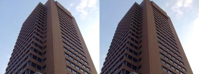 東大阪市役所(交差法)