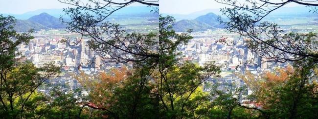 八幡山山頂 展望館②(平行法)