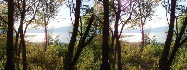 八幡山山頂 城址からの琵琶湖(平行法)