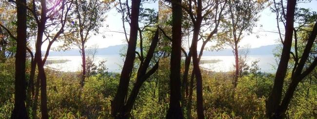 八幡山山頂 城址からの琵琶湖(交差法)