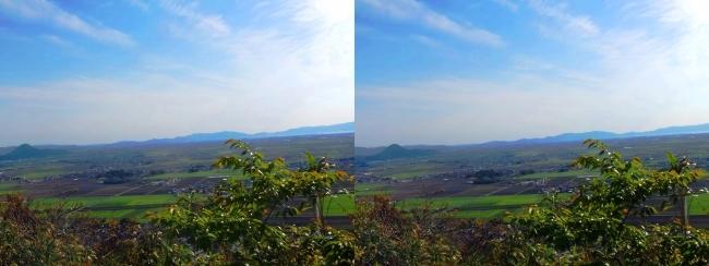 八幡山山頂 西の丸跡⑦(平行法)