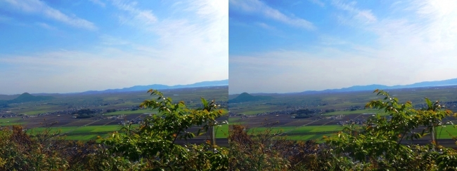 八幡山山頂 西の丸跡⑦(交差法)