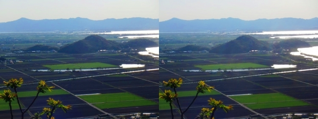 八幡山山頂 西の丸跡③(交差法)