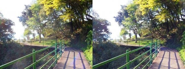 八幡山山頂①(平行法)