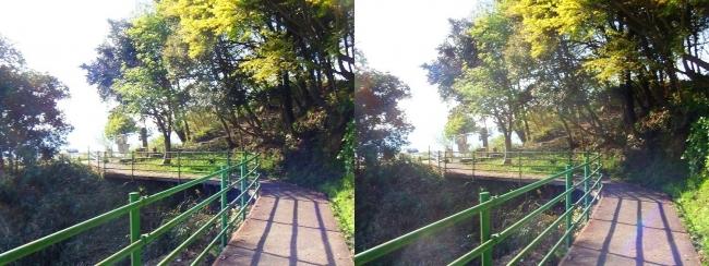 八幡山山頂①(交差法)