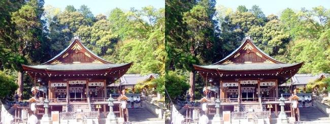 日牟禮八幡宮 拝殿①(平行法)