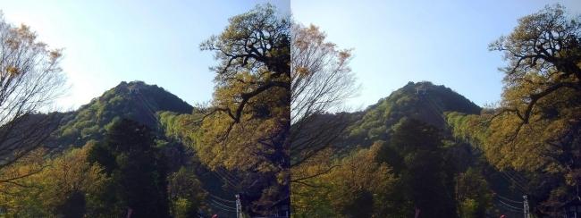八幡山(交差法)