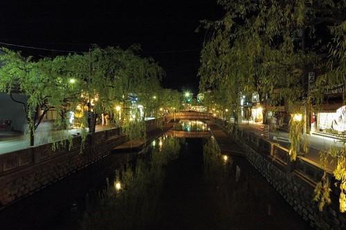 夜の柳並木