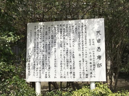 【2017 松ケ岡公園の桜並木】・10