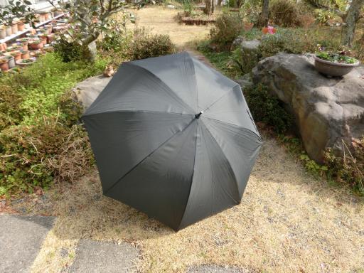コンビニの傘