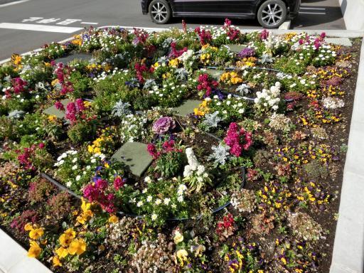 スーパーの花壇