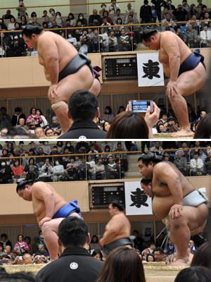 大相撲宝塚場所 10