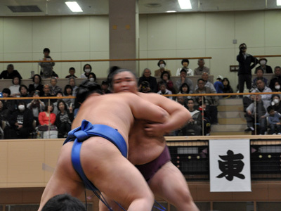 大相撲宝塚場所 11
