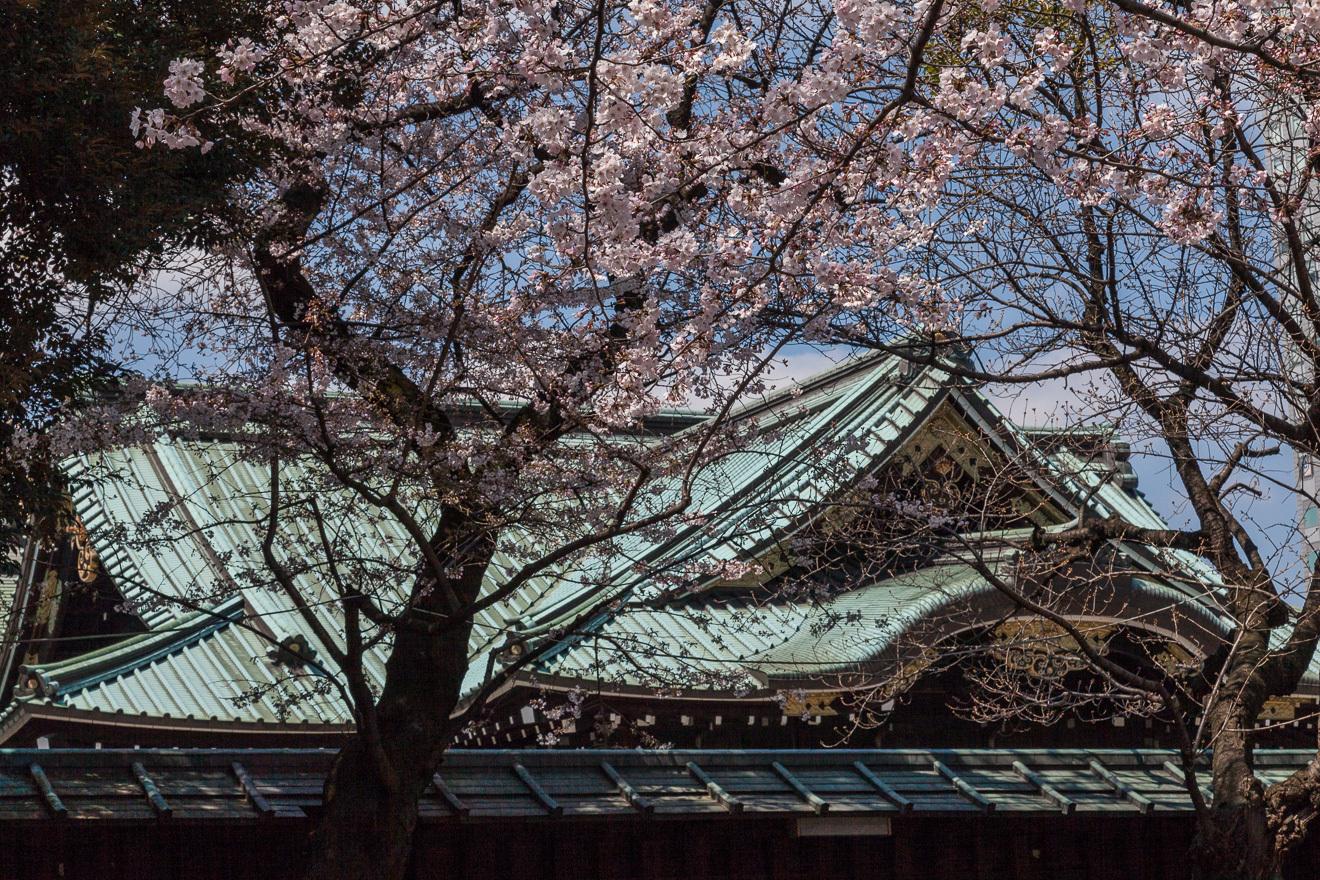 170403靖国神社-1-7