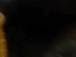 DSC04442_R.jpg